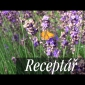 Embedded thumbnail for Ako pestovať levanduľu